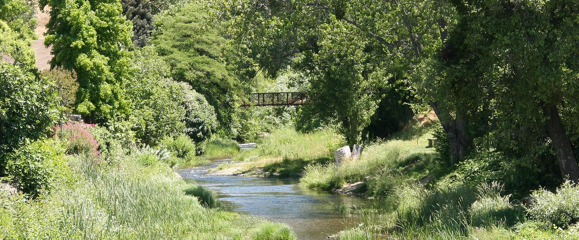 sutter creek and bridge